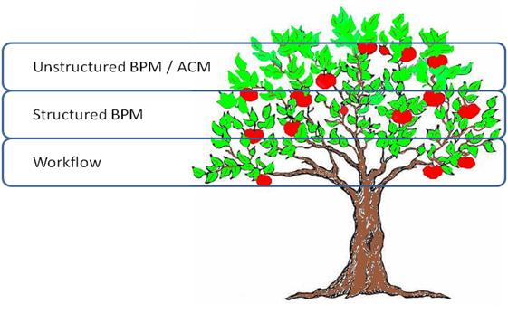 BPM tree